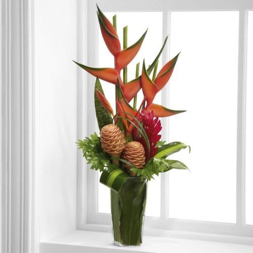 Tropical_Aloha_53f288bf5af02