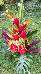 BOUQUET- Kalapana Bouquet