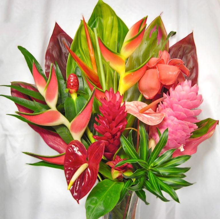 arrangement_waliua